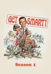 Get Smart S01E29
