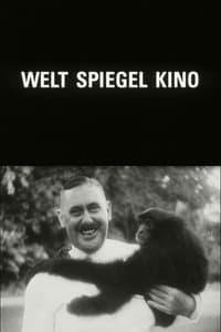 Welt Spiegel Kino