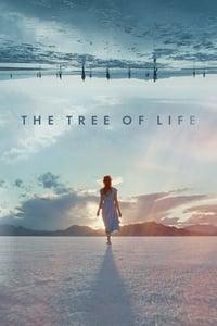 copertina film The+Tree+of+Life 2011