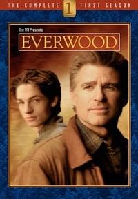 Everwood S01E13