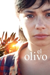 copertina film The+Olive+Tree 2016
