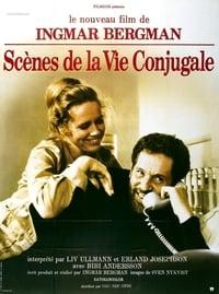 Scènes de la vie conjugale (1974)