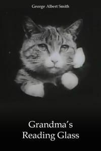 Grandma's Reading Glass