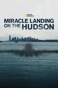 Miracle Landing on the Hudson (2014)