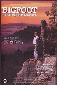 copertina film Bigfoot%3A+The+Unforgettable+Encounter 1994