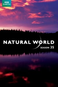 Natural World S35E04