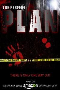 copertina serie tv The+Perfect+Plan 2019