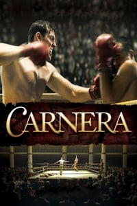 copertina film Carnera+-+The+Walking+Mountain 2008