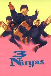 copertina film 3+Ragazzi+Ninja 1992
