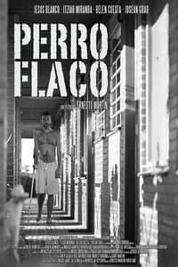 Perro flaco (2011)