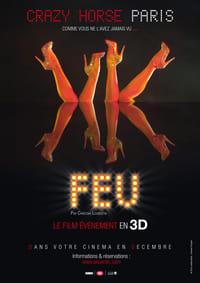 copertina film Feu%3A+crazy+horse+Paris 2012