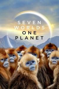 copertina serie tv Seven+Worlds%2C+One+Planet 2019