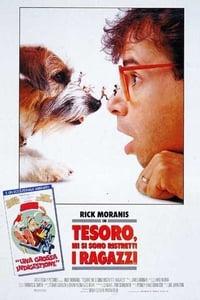 copertina film Tesoro%2C+mi+si+sono+ristretti+i+ragazzi 1989