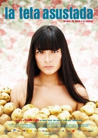 copertina film Il+canto+di+Paloma 2009