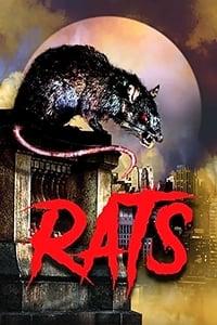 copertina film Rats 2003