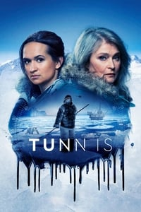 copertina serie tv Thin+Ice 2020