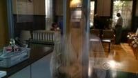 Ghost Whisperer S05E03