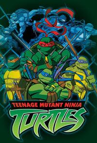 copertina serie tv Tartarughe+Ninja 2003
