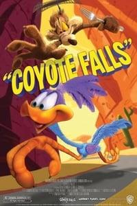 copertina film Coyote+Falls 2010