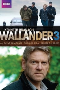 Wallander S03E01