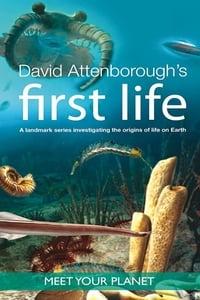 copertina serie tv First+Life+%E2%80%93+Alla+scoperta+delle+origini+della+vita+sulla+Terra 2010