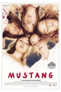 copertina film Mustang 2015