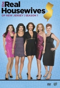 The Real Housewives of New Jersey S01E08