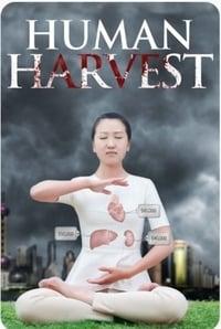 Human Harvest (2014)