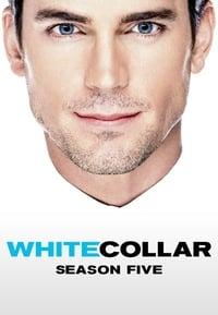 White Collar S05E05