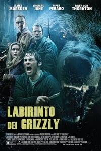 copertina film Labirinto+dei+Grizzly 2015