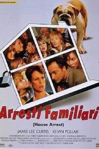 copertina film Arresti+familiari 1996