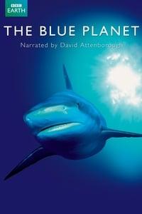 copertina serie tv The+Blue+Planet 2001