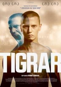 Tigrar (2021)