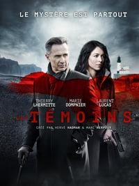 copertina serie tv I+testimoni 2014