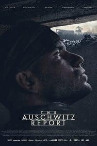 The Auschwitz Report