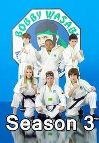 Kickin' It S03E09