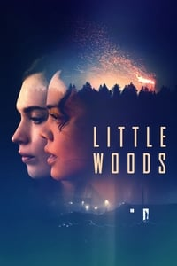 copertina film Little+Woods 2019
