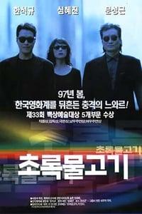 copertina film Green+Fish 1997