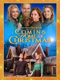 copertina film Tornando+a+casa+per+Natale 2013