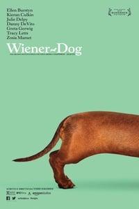 copertina film Wiener-Dog 2016