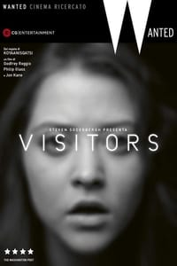 copertina film Visitors 2013