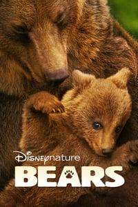 copertina film Bears 2014