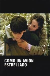 Como un avión estrellado (2005)