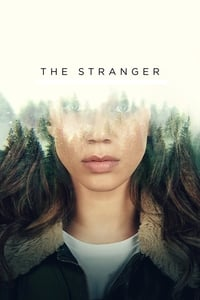 copertina serie tv The+Stranger 2020