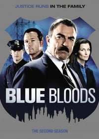 Blue Bloods S02E16