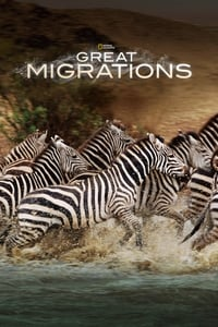 copertina serie tv Le+grandi+migrazioni 2010