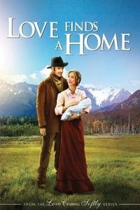 copertina film L%27amore+trova+casa 2009