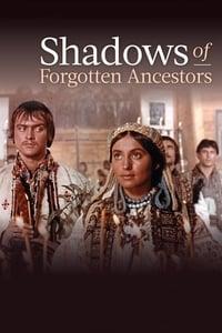 Тіні забутих предків