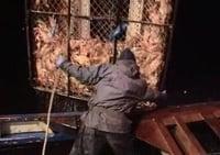 Deadliest Catch S04E10