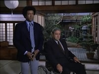 Ironside Season 5 Episode 15